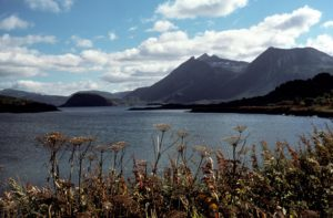 Kodiak Island mountain/beach scene
