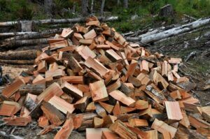 Pile of cut firewood